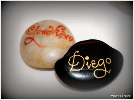 Mariage Genevieve et Diego