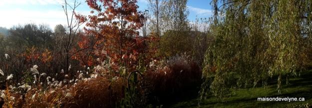 Au jardin oct 2014