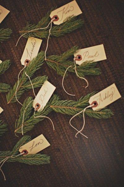 Branches épineux